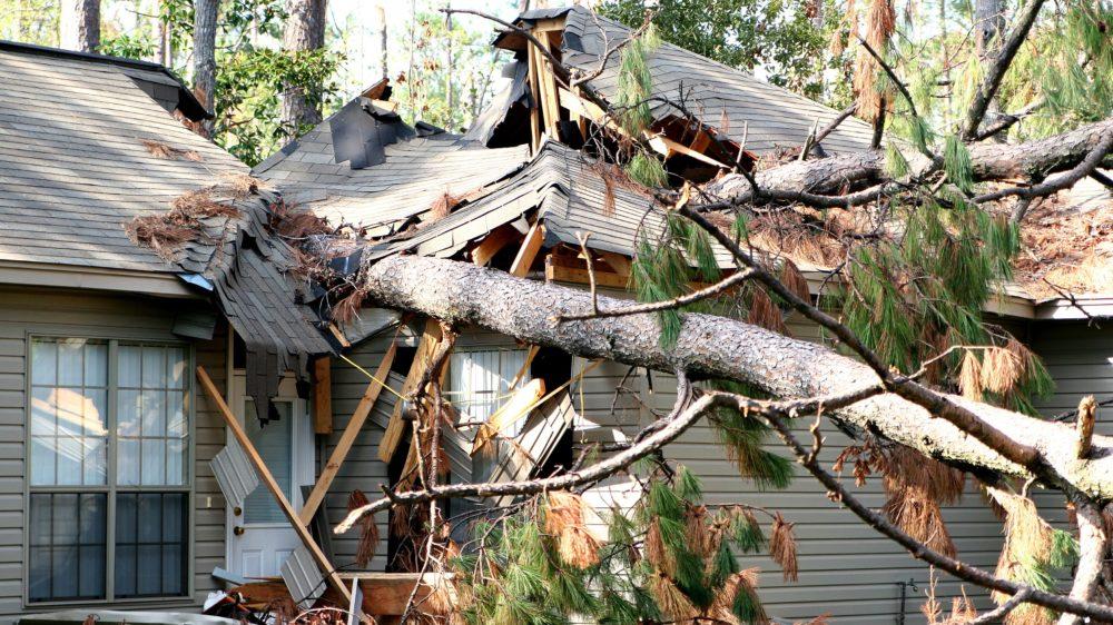 Storm and Wind Damage Restoration Experts Gainesville FL